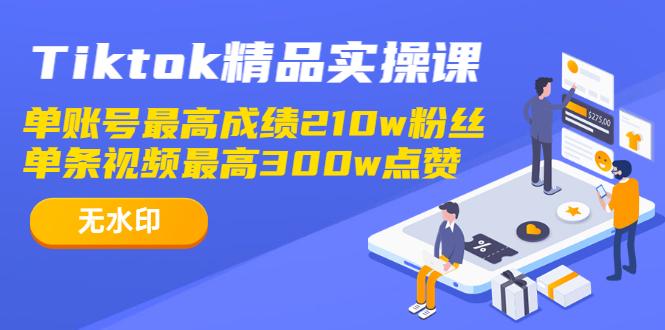 TIKTOK精品实操课,单账号最高成绩210W粉丝 单条视频最高300W点赞(无水印)插图